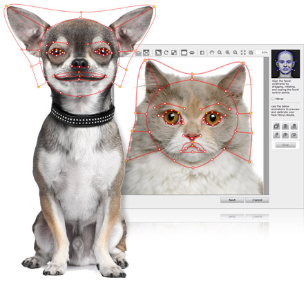 turn images into talking pets